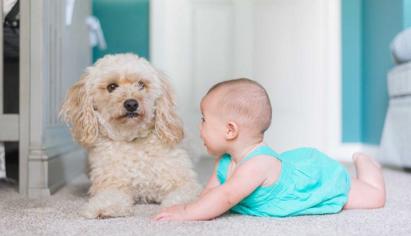 Benefici sulla convivenza tra cane e bambini